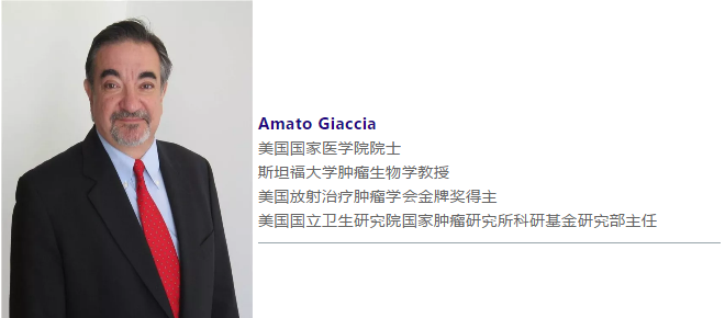 Amato Giaccia介绍.png