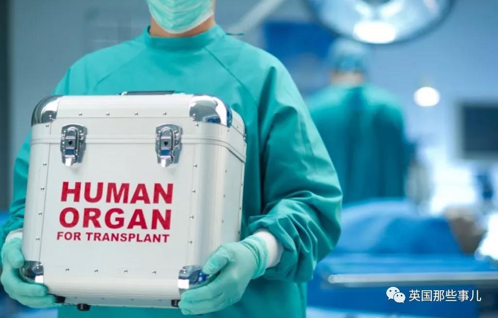 器官移植-2.jpg