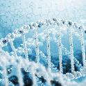 蛋白质互作:串联亲和纯化(TAP-MS)